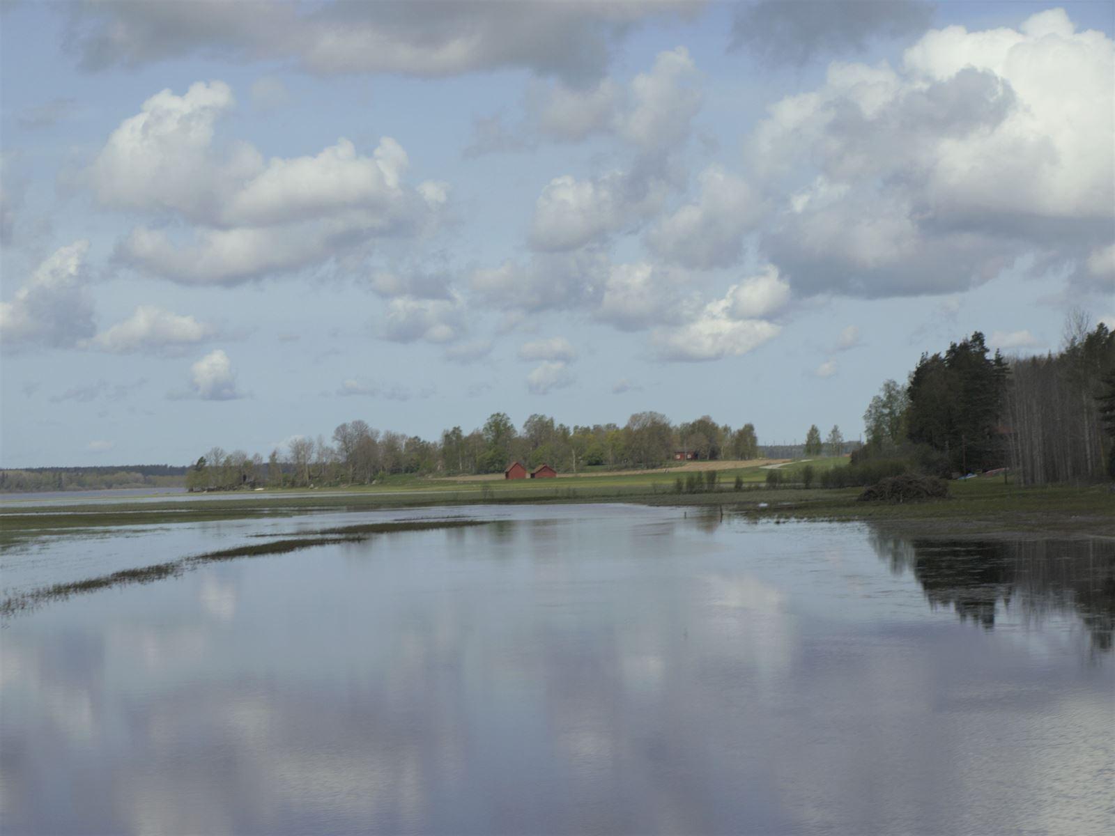 Bild från Svartådalen som är känd för sina sjöar och översvämningsmarker och som lockar till sig ett rikt fågelliv.